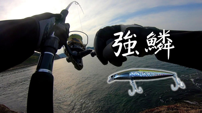 青物魚釣りに◎新作ルアー「ストロングアサシンフラッシュブースト」レビュー《動画》