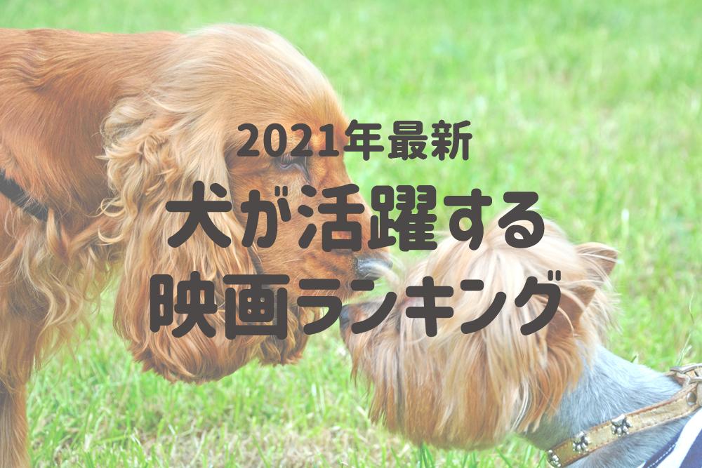 2021年版犬が活躍する映画ランキング